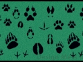 animal_prints_mat01l