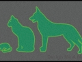 pet-shop-mat-01